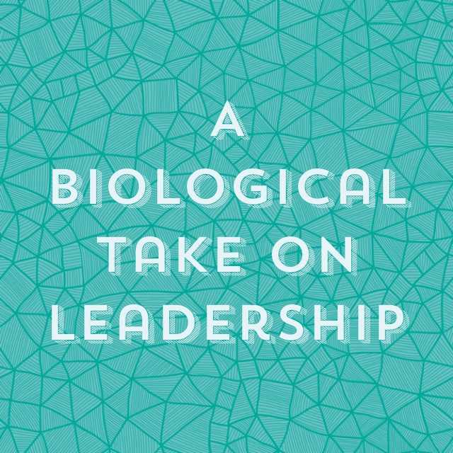 A biological take on leadership.